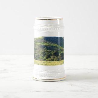Valle del prado jarra de cerveza