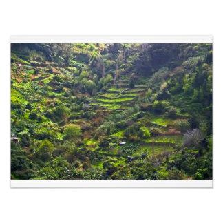 valle ocultado arte con fotos