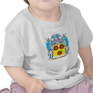 Vallentine Coat of Arms - Family Crest Tee Shirt