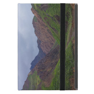 Valley At Denali's Toklat River Covers For iPad Mini