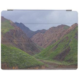 Valley At Denali's Toklat River iPad Cover