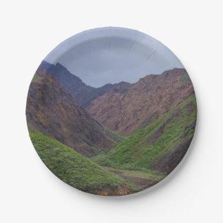 Valley At Denali's Toklat River Paper Plate