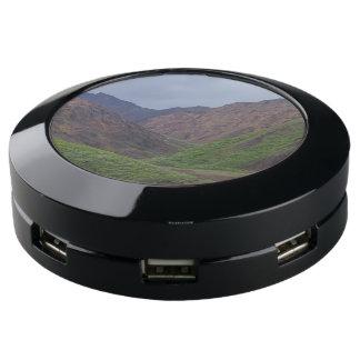Valley At Denali's Toklat River USB Charging Station