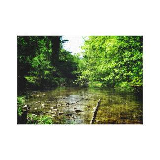 Valley Creek Canvas Print