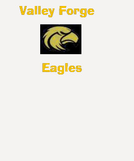 Valley Forge3, Eagles Tees