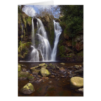 Valley of Desolation, Yorkshire Dales Cards