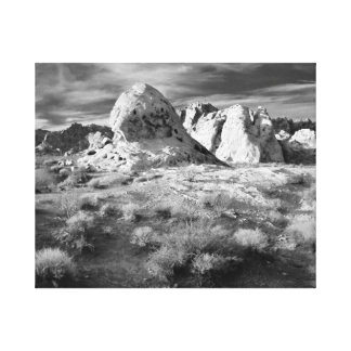 Valley of Fire Black & White Canvas Print
