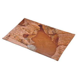 VALLEY OF FIRE ERODED DESERT ROCKS DETAIL PLACEMAT