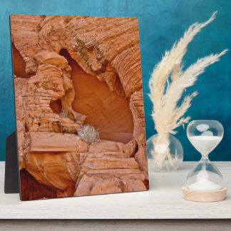 VALLEY OF FIRE ERODED DESERT ROCKS DETAIL PHOTO PLAQUE
