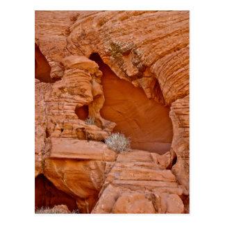 VALLEY OF FIRE ERODED DESERT ROCKS DETAIL POSTCARD