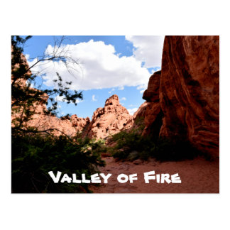 Valley of Fire Nevada Postcard