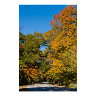Valley Parkway in Fall Posters