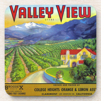 Valley View Coaster