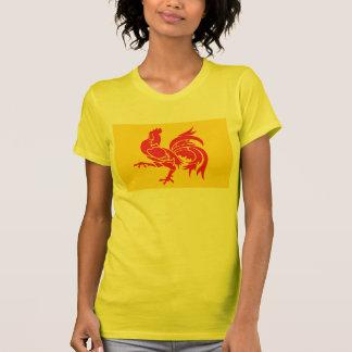 Valonia señala la camiseta por medio de una