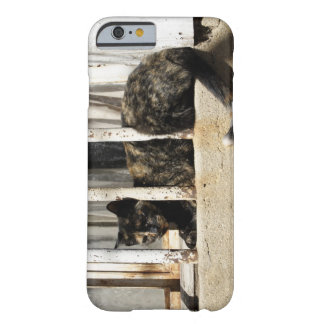 Valparaiso is Chile's most important seaport and Barely There iPhone 6 Case