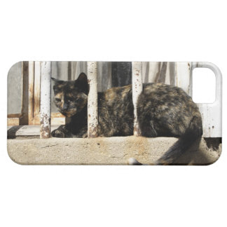 Valparaiso is Chile's most important seaport and iPhone 5 Cases
