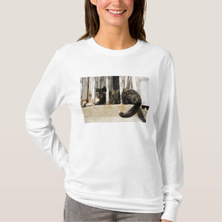 Valparaiso is Chile's most important seaport and T-Shirt