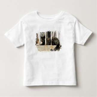 Valparaiso is Chile's most important seaport and Toddler T-shirt