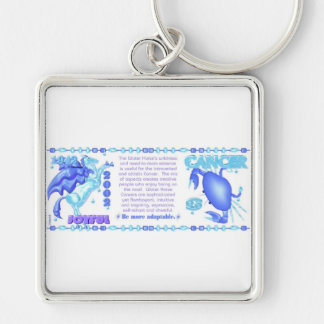 Valxart 1942 2002 zodiac water horse born Cancer Key Chains