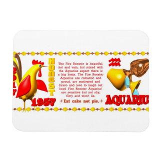 Valxart 1957 2017 2077 FireRooster zodiac Aquarius Magnet