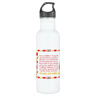 Valxart 1987 2047 FireRabbit zodiac Gemini 24oz Water Bottle