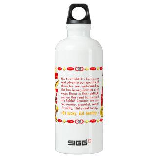 Valxart 1987 2047 FireRabbit zodiac Gemini Aluminum Water Bottle