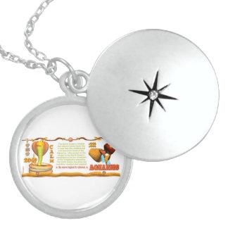 Valxart 1989 2049 EarthSnake zodiac Aquarius Round Locket Necklace