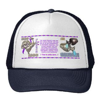 Valxart 1990 2050 MetalHorse zodiac Aquarius Trucker Hat