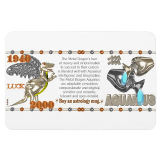 Valxart 2000 1940 2060 zodiac MetalDragon Aquarius Magnet