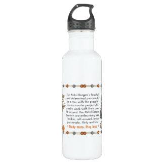 Valxart 2000 1940  2060 zodiac MetalDragon Gemini Stainless Steel Water Bottle