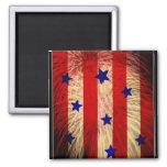 ValxArt fireworks flag abstract design Fridge Magnet