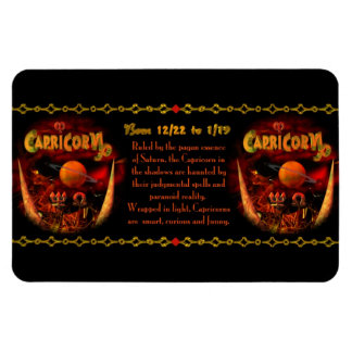 Valxart gothic Capricorn zodiac astrology Rectangular Photo Magnet