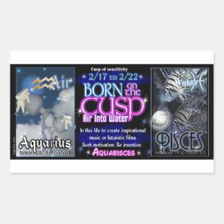 Valxart Zodiac Cusp Aquarius Pisces Rectangular Sticker