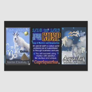 Valxart Zodiac Cusp Capricorn Aquarius Rectangular Sticker