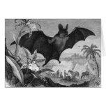 Vampire Bat Cards