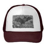 Vampire Bat Lithograph Faded Hat