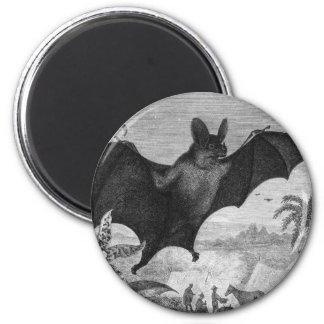 Vampire Bat 2 Inch Round Magnet