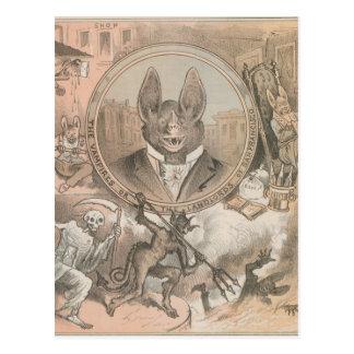 Vampire Bat Portrait Postcard