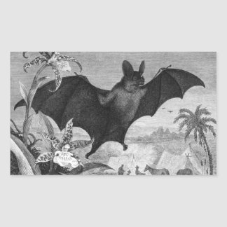 Vampire Bat Rectangular Sticker