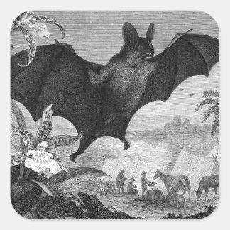 Vampire Bat Square Sticker