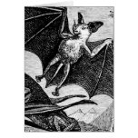 Vampire Bats Greeting Cards
