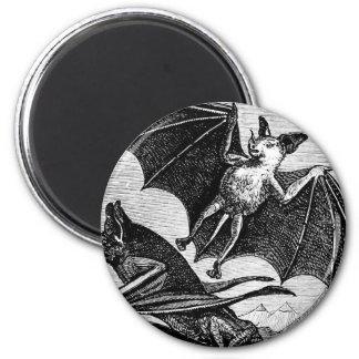 Vampire Bats Fridge Magnets