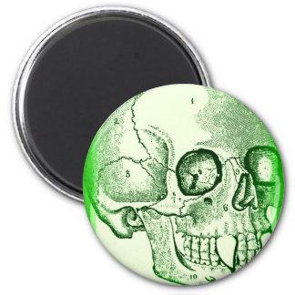 VAMPIRE SKULL PRINT IN BRIGHT GREEN MAGNET