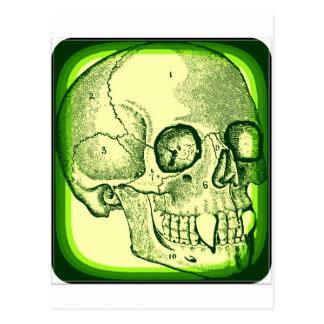 VAMPIRE SKULL PRINT IN GREEN FRAME POSTCARD