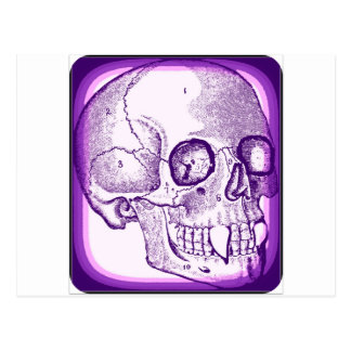 VAMPIRE SKULL PRINT IN PURPLE FRAME POSTCARD