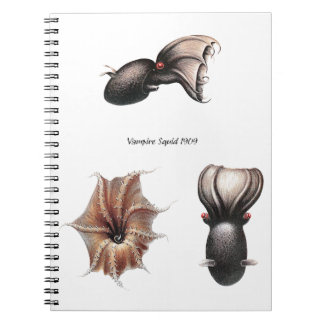 Vampire Squid Notebook