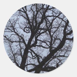 Vampire Tree Classic Round Sticker