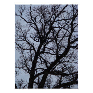 Vampire Tree Poster