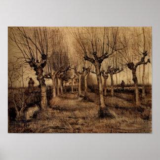 Van Gogh - abedules del árbol descopado Impresiones