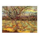 Van Gogh; Albaricoqueros en el flor, arte del Tarjetas Postales